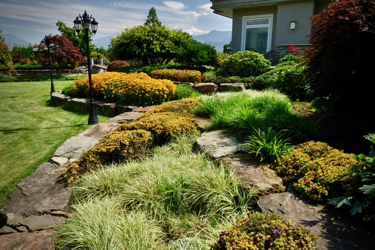The best time to water your garden transformations When is the best time to water your garden